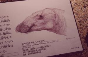 museum of scienc and nature chikjukan gallery ueno tokyo JaPlanning travel 1BF