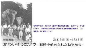 Wanli Tonky Ueno Zoo WWII Japan Tokyo history